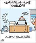 Work from Home Chatty Co-Workers