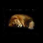 Rectangular Throw Pillows
