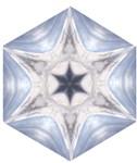 Snow Star Hexagon