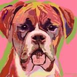 Pop Art Boxer