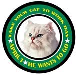 Persian Cat Humor