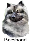 Keeshond Dog Breed Apparel Gifts