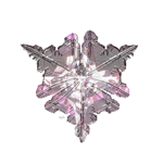The Shimmering Snowflake<br>Collection