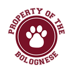 Bolognese T-Shirts