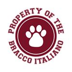 Bracco Italiano T-Shirts