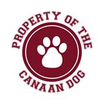 Canaan Dog T-Shirts