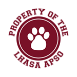 Lhasa Apso T-Shirts