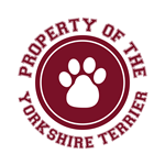 Yorkshire Terrier T-Shirts