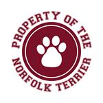 Norfolk Terrier T-Shirts