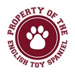 English Toy Spaniel T-Shirts