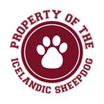 Icelandic Sheepdog T-Shirts