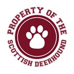 Scottish Deerhound T-Shirts
