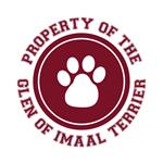 Glen of Imaal Terrier T-Shirts