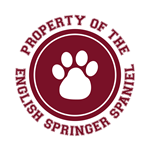 English Springer Spaniel T-Shirts