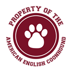 American English Coonhound T-Shirts