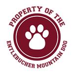 Entlebucher Mountain Dog T-Shirts