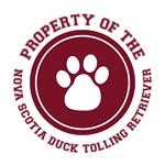 Nova Scotia Duck Tolling Retriever T-Shirts