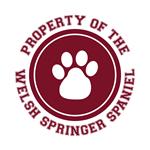 Welsh Springer Spaniel T-Shirts