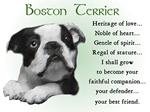 Boston Terrier Lover Gifts