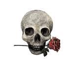 Gothic Romance Skull & Rose