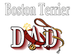 Boston Terrier Dad
