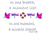 Miracle Moments