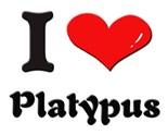 Cartoon Platypus