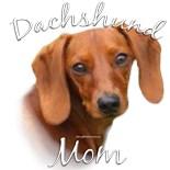 Dachsie