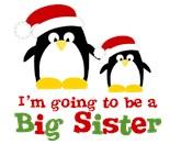 Holiday Big Sister