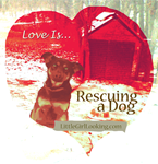 Love Is...Rescuing a Dog!