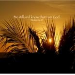 Psalm 46 10