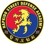 Hapkido Martial Arts