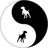 Chinese Dogs