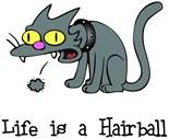 Life Good Cat