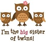 Owl Big Sister
