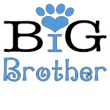 Dog Big Brother