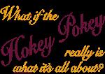 Even More Hokey Pokey Stuff