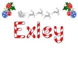 Exley Name
