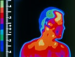 Thermograph
