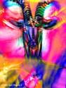 Psychedelic baphomet Full / Queen