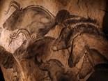 Animals Anthropological Archaeological Archeologi