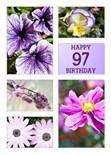 97Th Birthday