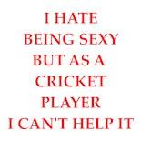 Game Cricket