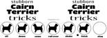 Stubborn Boston Terrier Tricks