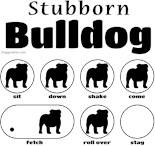 Stubborn English Bulldog Tricks