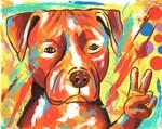 """Pitbull """"Peace"""""""