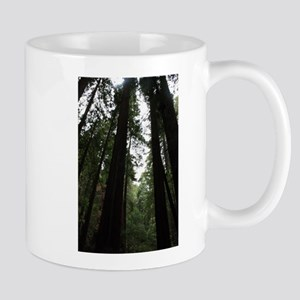 Muir Woods, California Mug