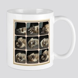 Tonkinese Self Petting Mug