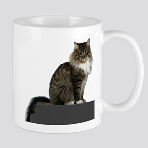 maine coon sitting tabby white Mugs