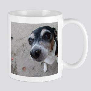 Beach Rat Terrier Mugs